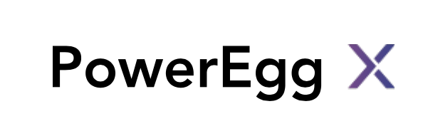 PowerVision - PowerEgg X Battery